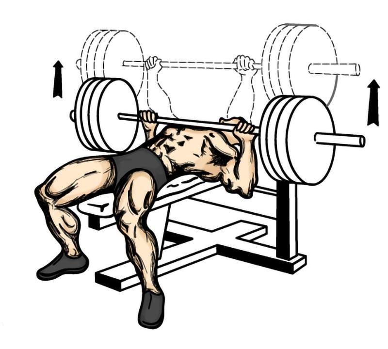 Exercise Tips on benching your own body weight!